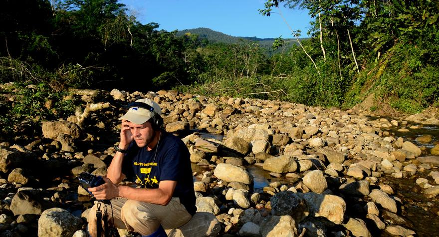 Ernesto amongst the rocks
